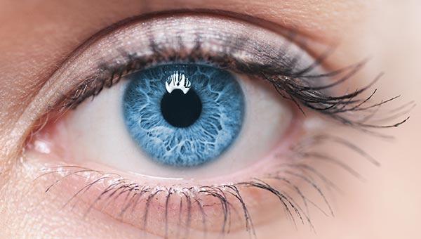 close up on blue human eye